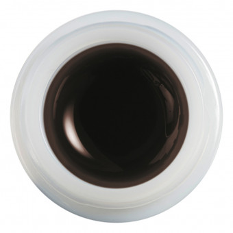ColorGEL Nr. 8 dunkel braun 7 ml